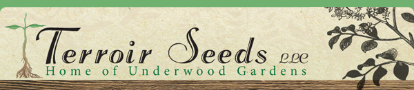 Stpehen and Cindy Scott of Terroir Seeds