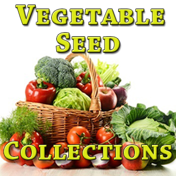 Vegetable Seed Collections