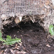 Compost Soil Food