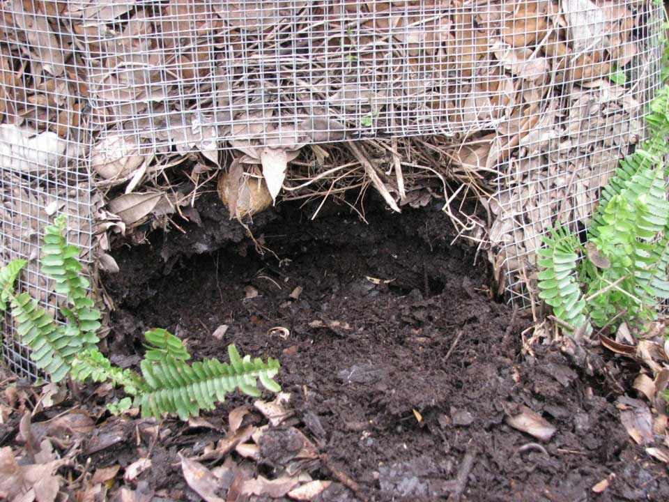 Compost nourishing your garden soil for Garden topsoil