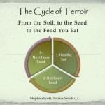 The Cycle of Terroir
