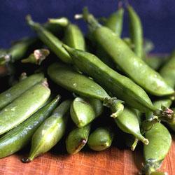 Heirloom Peas