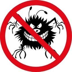 No Destructive Bugs