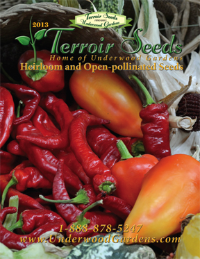 2013 Heirloom Seed Catalog