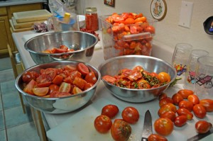 Fresh Tomatoes for Conserve