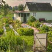 Russian Dacha Garden