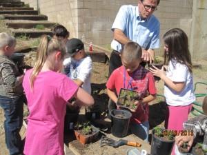 Humboldt Elementary School Garden