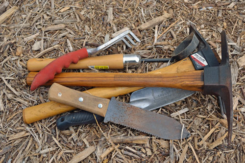 Garden tool cleanup terroir seeds for Gardening tools toronto