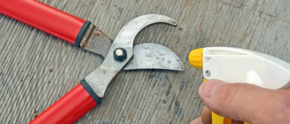 Sanitizing Pruners with and Alcohol Spray