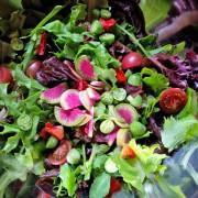 Heirloom Vegetable Salad