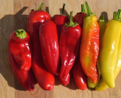 Hungarian Hot Wax Pepper2