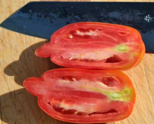 Speckled Roman Tomato Sliced Open