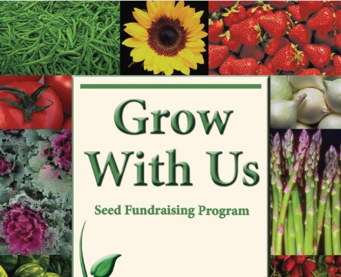 Seed Fundraiser