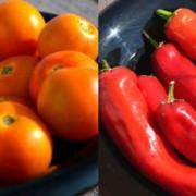 Heirloom Tomatoes & Peppers