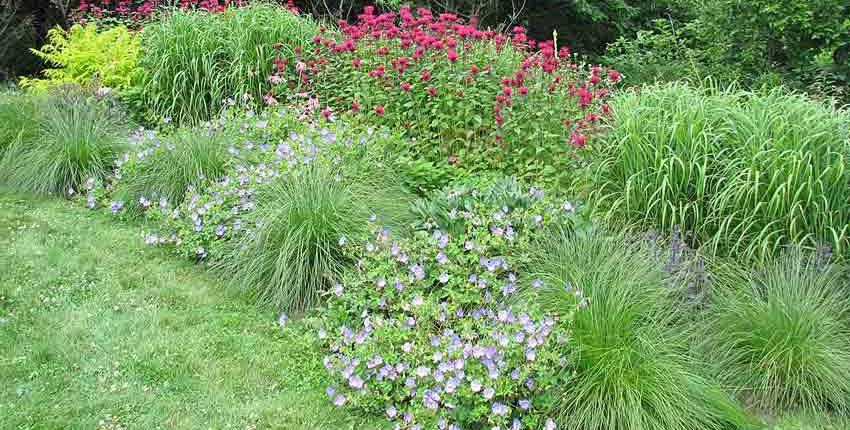 Flower & Grass Beds