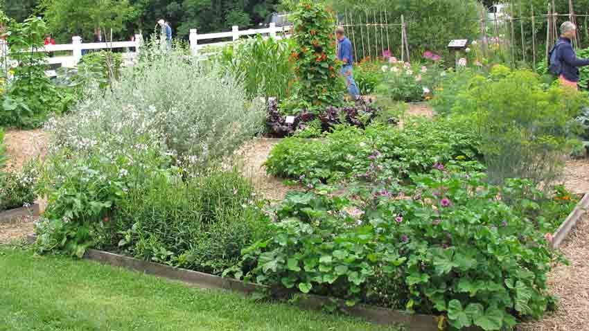easy garden ideas