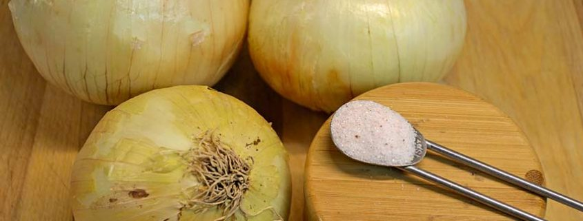 Six Hour Onion Ingredients