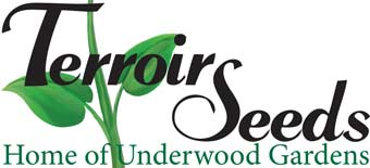 Terroir Seeds | Underwood Gardens