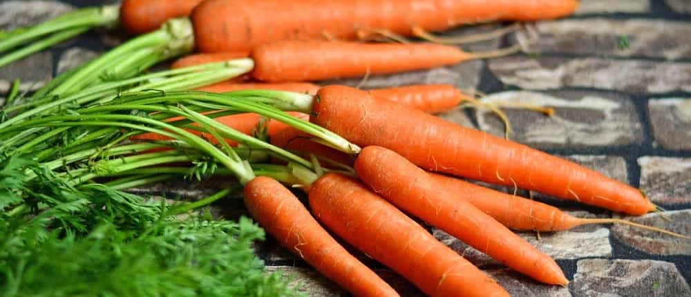 Heirloom Orange Carrots